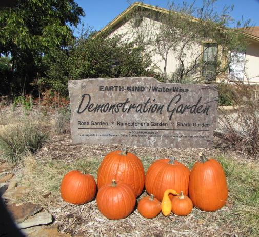 Demonstration Garden Sign with pumkins