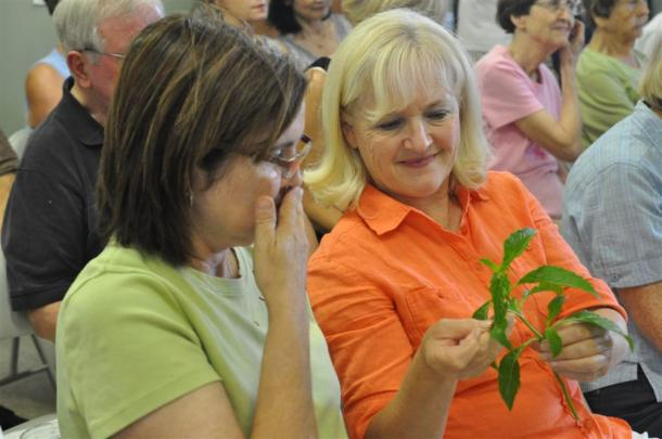 Bell Pepper Basil Sampled by Dallas County Master Gardeners Sheridan and Linda
