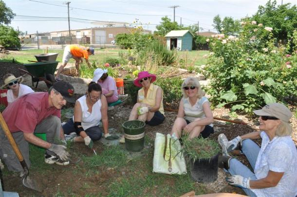 Dallas County Master Gardeners at work, weeding in the Demonstration Garden