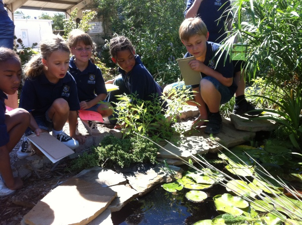 Field Trip Participants from Grace Academy Searching Our Pond For Gambusia
