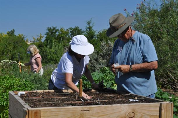 Dallas County Master Gardeners Busy With Fall Gardening