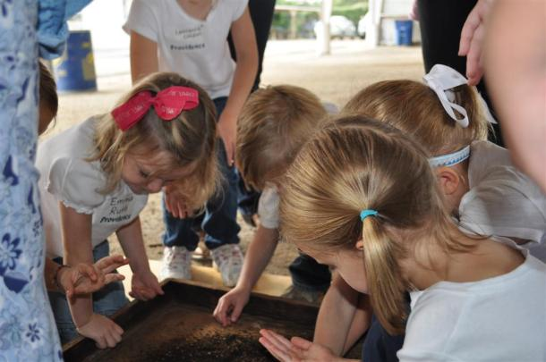 Red Wriggler Worms and Providence Christian School Students