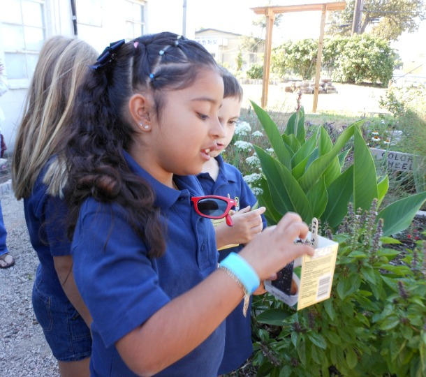 A Grace Academy Student Enjoying Learning and Nature At The Demonstration Garden