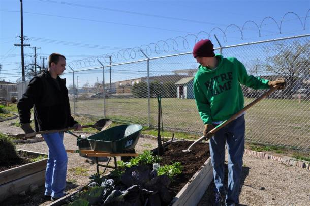 ILPS Students Preparing Vegetable Beds For Spring