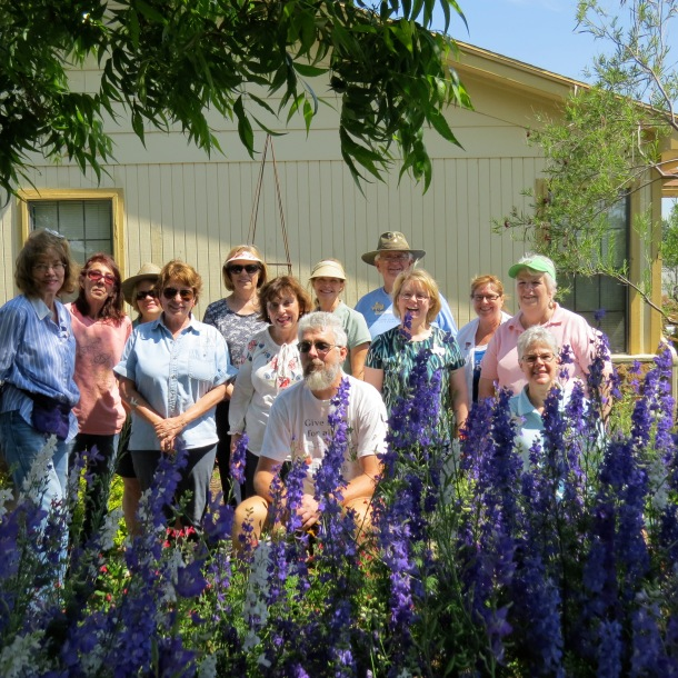Larkspur and  some Dallas County Master Gardeners