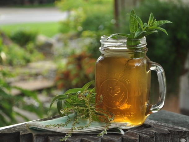 Lemon Verbena Tea, Dallas Garden Buzz