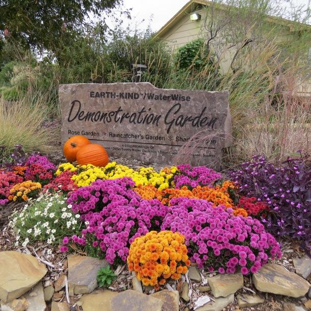 Demo Garden Fall 2013