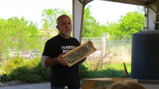 Honey Lunch Lecture with bee frame