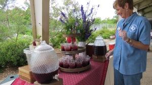 picnic lunch balckberry tea