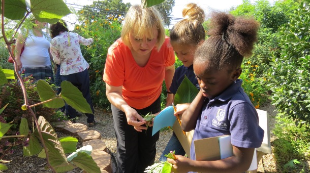 Grace Academy and Michele-plant ID