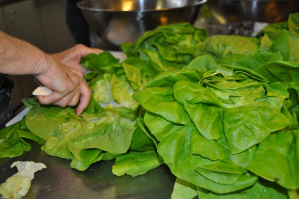 Lettuce Prep for Butterhead Lettuce Salad