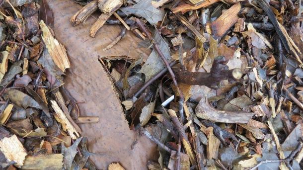 Mulch Close-Up