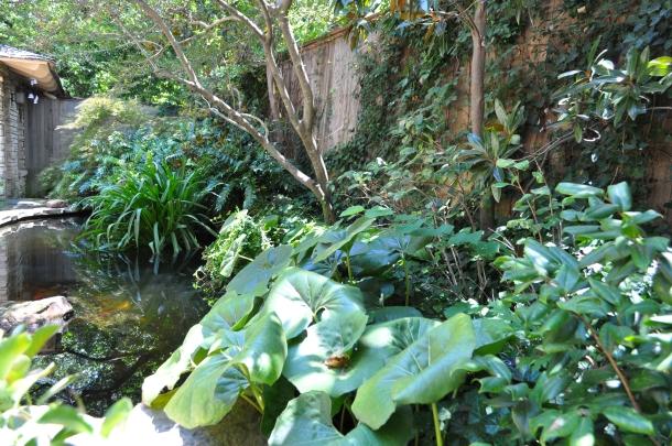 Linda's Pond