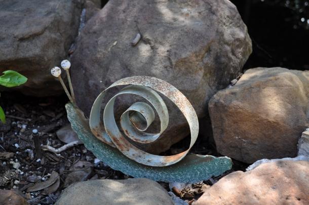 Linda's pond snail