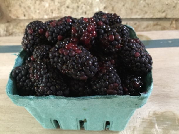 blackberries in carton