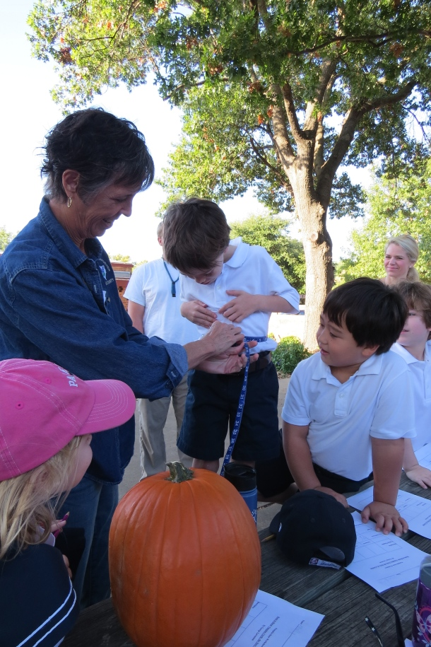 Pumpkin Math with Master Gardener Mrs Beadles