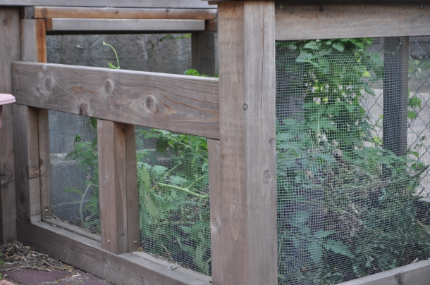 Compost Bin Of Redwood and Small Mesh Screening