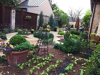 dorothys-garden